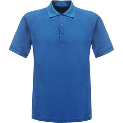 Textil Homem Polos mangas curta Regatta RG524 Oxford Blue