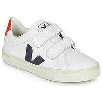 Sapatos Criança Sapatilhas Veja SMALL-ESPLAR-VELCRO Branco / Azul / Vermelho