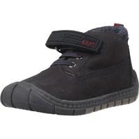 Sapatos Rapaz Botas de neve Chicco D4RREN Azul
