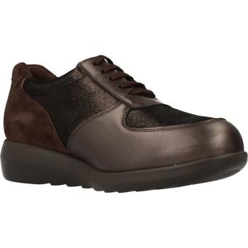 Sapatos Mulher Sapatilhas Pinoso's 7673 G Marron