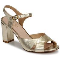 Sapatos Mulher Sandálias André JESS Ouro