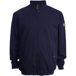 Textil Homem Jaquetas Duke Windsor Marinha