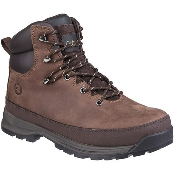 Sapatos Homem Sapato de segurança Cotswold  Brown