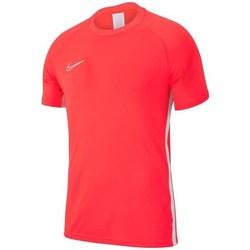 Textil Homem T-Shirt mangas curtas Nike Academy 19 Vermelho