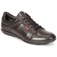 Sapatos Homem Sapatos Levi's TOULON Castanho