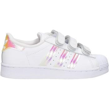 Sapatos Rapaz Sapatilhas adidas Originals - Superstar cf c bco/arg FV3655 BIANCO