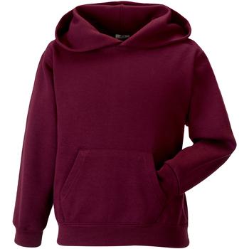 Textil Criança Sweats Jerzees Schoolgear 575B Borgonha