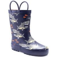 Sapatos Rapaz Botas de borracha Cotswold  Tubarão