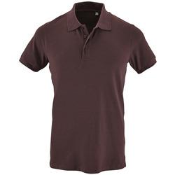 Textil Homem Polos mangas curta Sols PHOENIX MEN SPORT Violeta