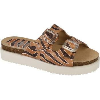 Sapatos Mulher Chinelos Down To Earth  Marrom / Castanho