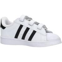 Sapatos Rapaz Sapatilhas adidas Originals - Superstar bco/nero EF4842 BIANCO