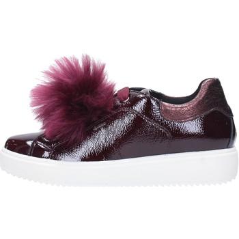 Sapatos Mulher Sapatilhas IgI&CO 2154844 Multicolore