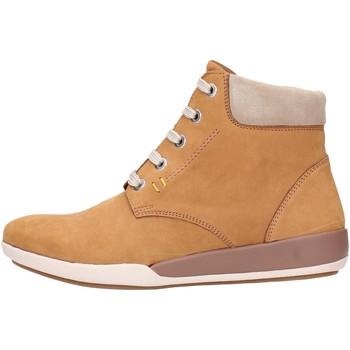 Sapatos Mulher Botas baixas Benvado MOIRA Multicolore