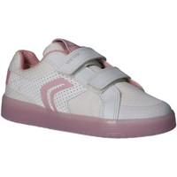 Sapatos Rapariga Multi-desportos Geox J924HC 0GNBU J KOMMODOR Blanco