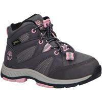 Sapatos Rapariga Multi-desportos Timberland A21RB NEPTUNE Gris