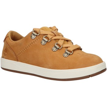 Sapatos Criança Sapatos & Richelieu Timberland A23QJ DAVIS Beige