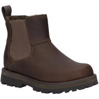 Sapatos Criança Botas baixas Timberland A28PN COURMA Gris