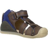 Sapatos Rapaz Sandálias Biomecanics 182147 Cinza