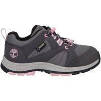 Sapatos Criança Multi-desportos Timberland A224V NEPTUNE Gris