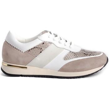 Sapatos Mulher Sapatilhas Stephen Allen 10833-C11 Bege
