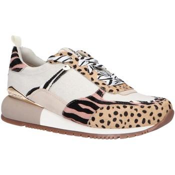 Sapatos Mulher Multi-desportos Gioseppo 58634 Hueso