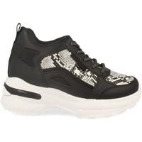 Sapatos Mulher Sapatilhas de cano-alto Festissimo Y288-100 Negro