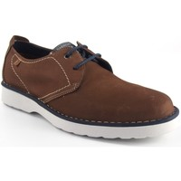 Sapatos Homem Sapatos Baerchi 3670 Marrón