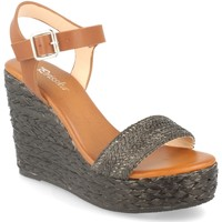 Sapatos Mulher Sandálias Prisska YB519 Negro