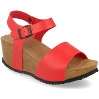 Sapatos Mulher Sandálias Silvian Heach M-77 Rojo