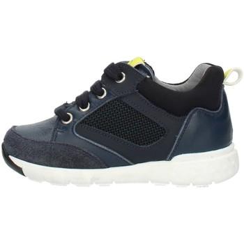 Sapatos Criança Sapatilhas de cano-alto Nero Giardini A923730M Azul