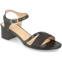 Sapatos Mulher Sandálias Prisska ZYT8250 Negro