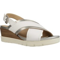 Sapatos Mulher Sandálias Geox D MARYKARMEN P. B Branco