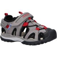 Sapatos Criança Sandálias desportivas Geox J020RA 014ME J BOREALIS C0051 GREY Gris