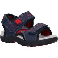 Sapatos Criança Sandálias desportivas Geox J0224A 0MECE J S STRADA C0735 NAVY Azul