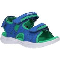 Sapatos Criança Sandálias desportivas Geox J025XA 0CE15 J VANIETT C4165 ROYAL Azul