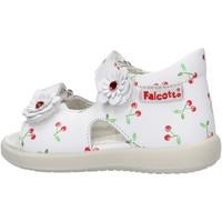 Sapatos Rapaz Sapatos aquáticos Falcotto - Sandalo bianco SHAMAL-0N01 BIANCO
