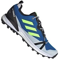 Sapatos Homem Sapatilhas de corrida adidas Originals Terrex Skychaser LT Gtx Azul