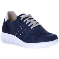Sapatos Mulher Sapatilhas Grunland BLU CALL Blu
