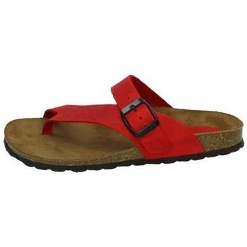 Sapatos Mulher Sandálias Interbios  Vermelho