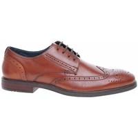 Sapatos Homem Sapatos Josef Seibel 42205786370 Castanho