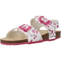 Sapatos Rapariga Sandálias Garvalin 202666 Branco
