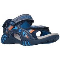 Sapatos Rapaz Sandálias Pablosky 963730 Niño Azul marino bleu