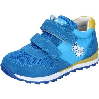 Sapatos Rapaz Sapatilhas Enrico Coveri BN680 Turquesa
