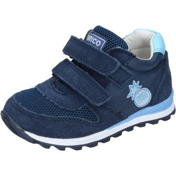 Sapatos Rapaz Sapatilhas Enrico Coveri BN683 Azul