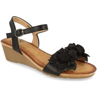 Sapatos Mulher Sandálias Colilai H090 Negro