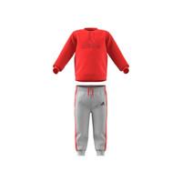 Textil Criança Conjunto adidas Performance MH LOG JOG FL Vermelho / Cinza