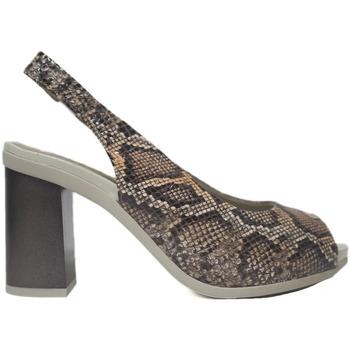 Sapatos Mulher Sandálias Pitillos Sandalias  6164 Arancio Castanho