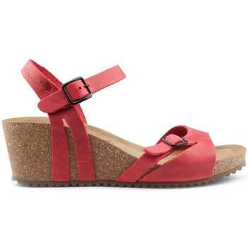 Sapatos Mulher Sandálias Interbios W Sandal mulher anatômica confortável RED