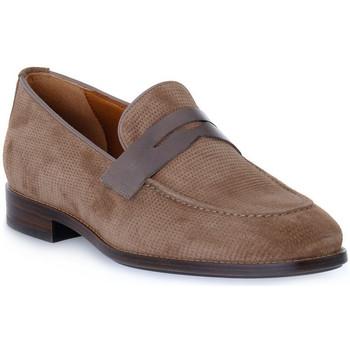 Sapatos Homem Mocassins Frau HIVE NAPPA TORTORA Beige