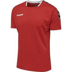 Textil T-Shirt mangas curtas Hummel Maillot  Authentic Poly HML rouge